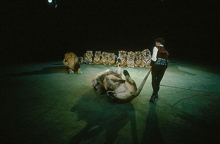 ©Николай Игнатьев. «Вальтер Запашный, укротитель львов и тигров, Московский Цирк»