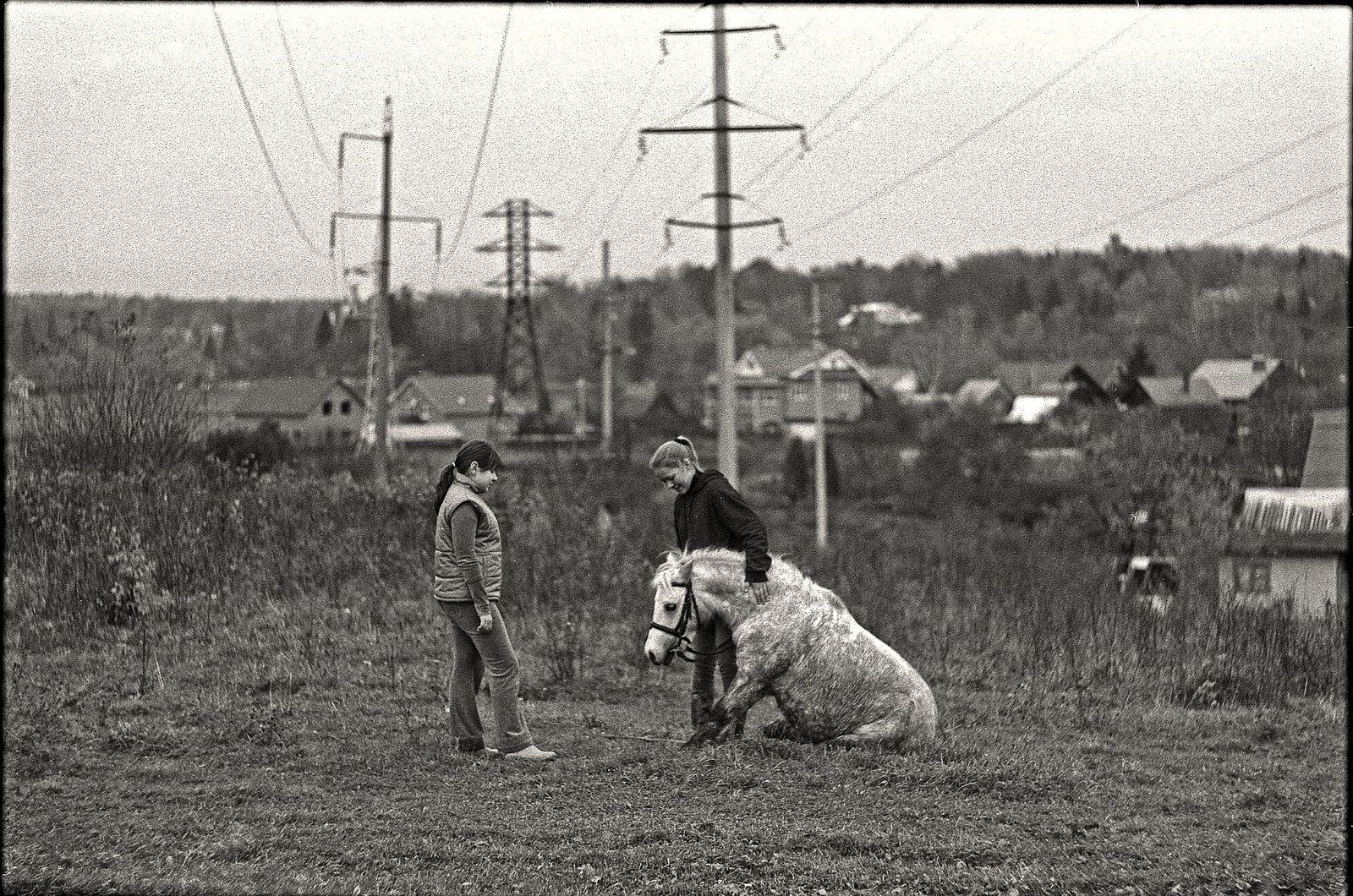 Николай Карташов. daily life. girl and horse