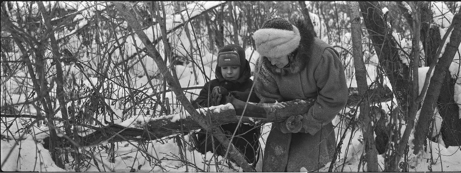 Николай Карташов. for firewood. for firewood
