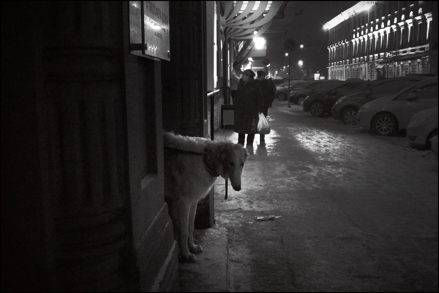 Артем Чернов. Артем Чернов. Зимой в Петербурге, 2012