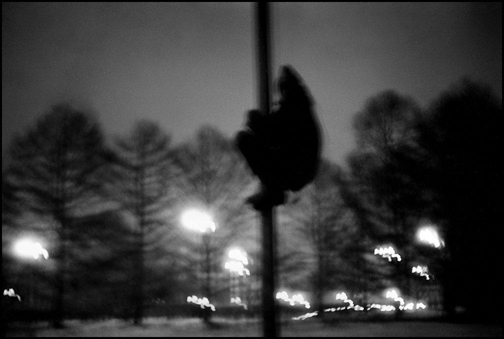 Артем Чернов. Артем Чернов. В парке МГУ ночью. 1990
