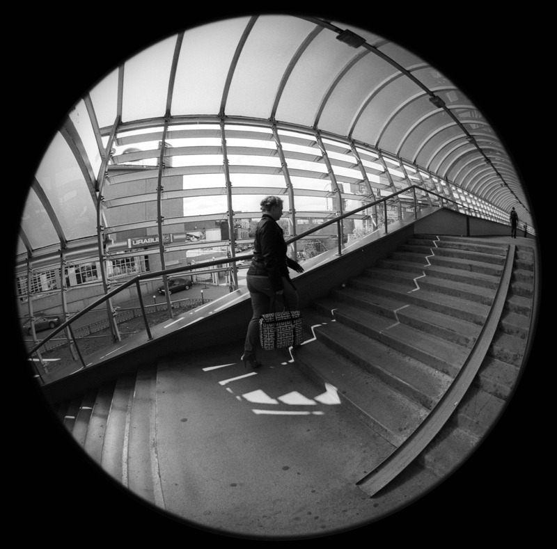 Пустынникова Наталья. Globe transition. Untitled