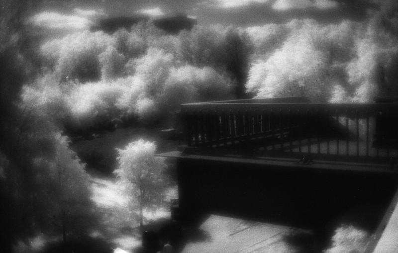 Пустынникова Наталья. Сны над водой. Untitled