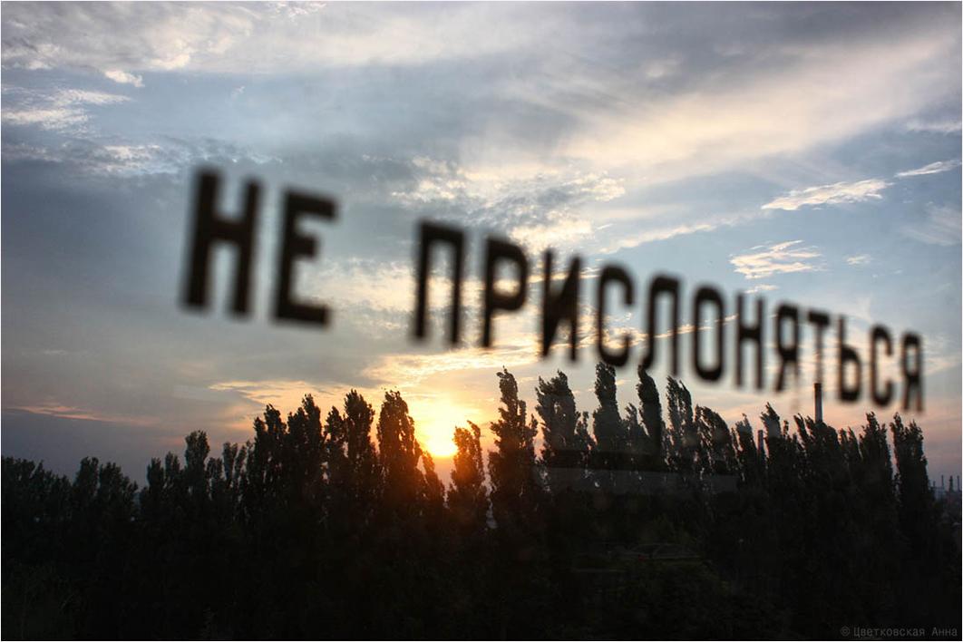Анна Цветковская. Зарисовки. ***