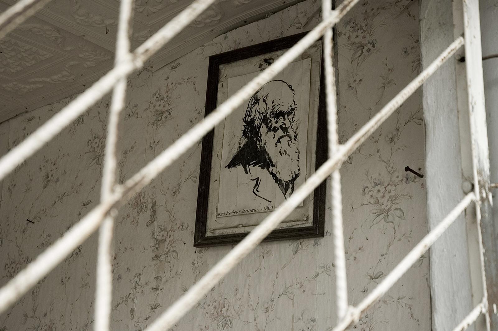 Алла Долгалева. Беслан, 2008. 002_310-312_b