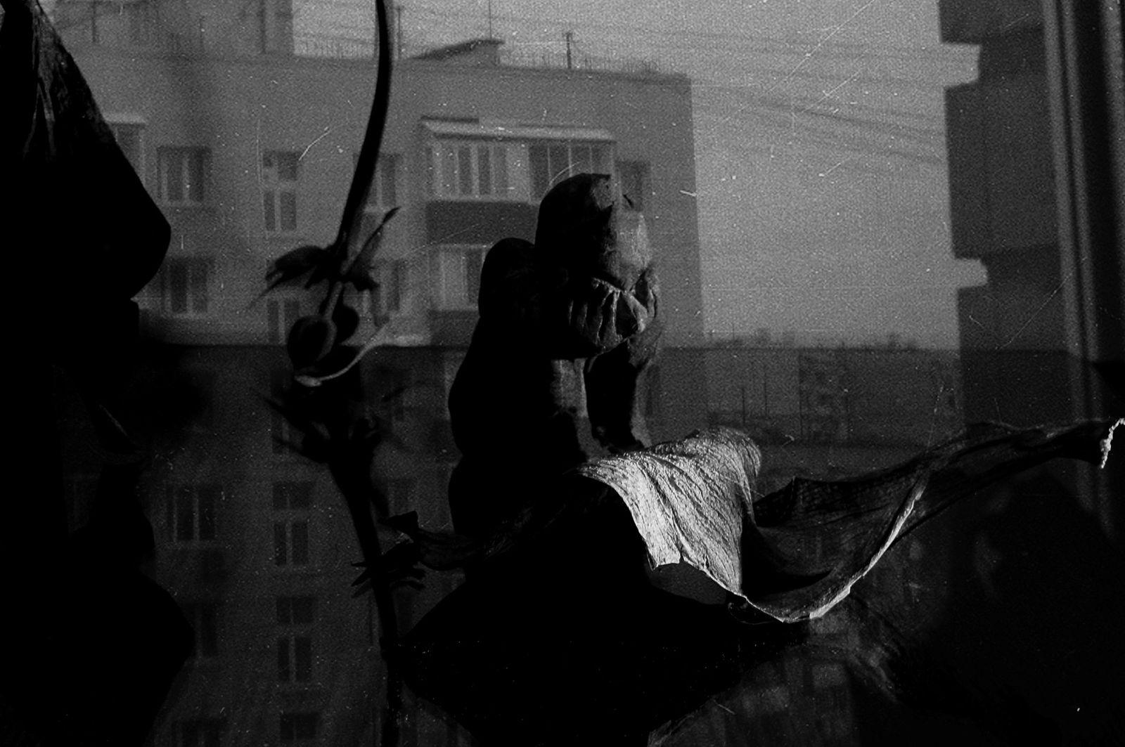 Елена Тарзиманова. сплин5