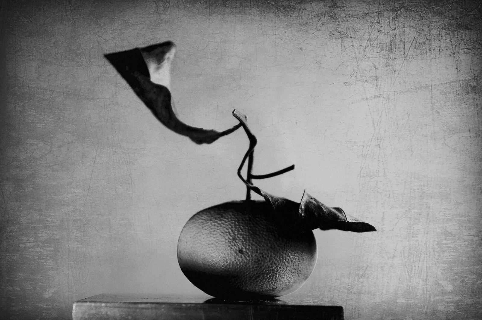 Elena Tarzimanova. Танец страсти