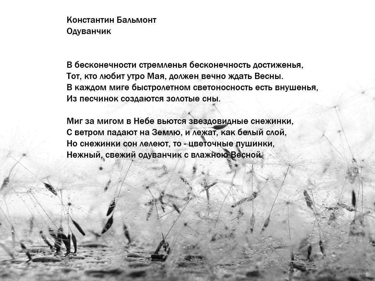 Elena Tarzimanova. Untittled