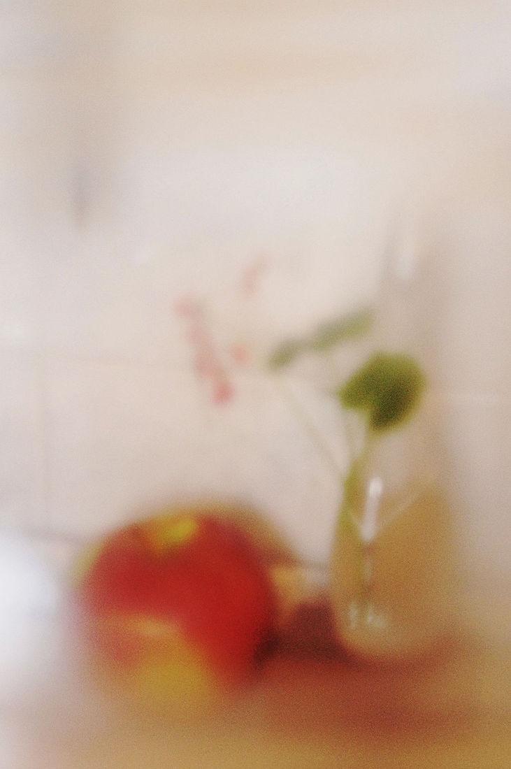 Elena Tarzimanova. яблоко