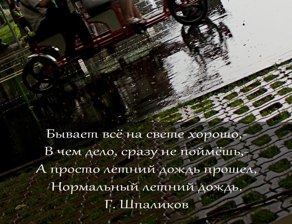 Elena Tarzimanova. Июньский дождь
