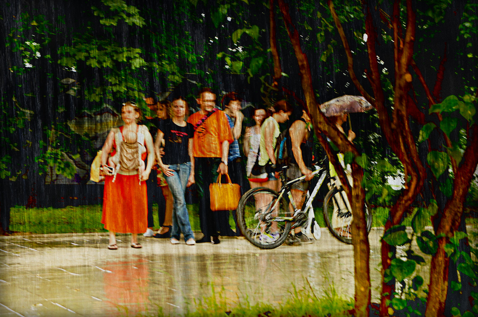 Elena Tarzimanova. Нормальный летний дождь...