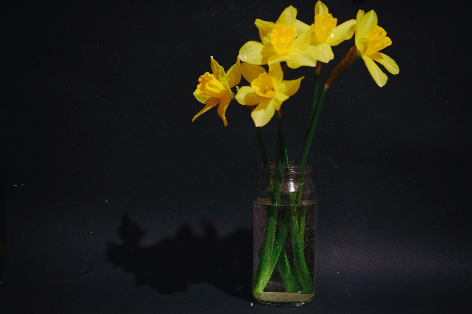 Марина Храмова. Весна. Без названия