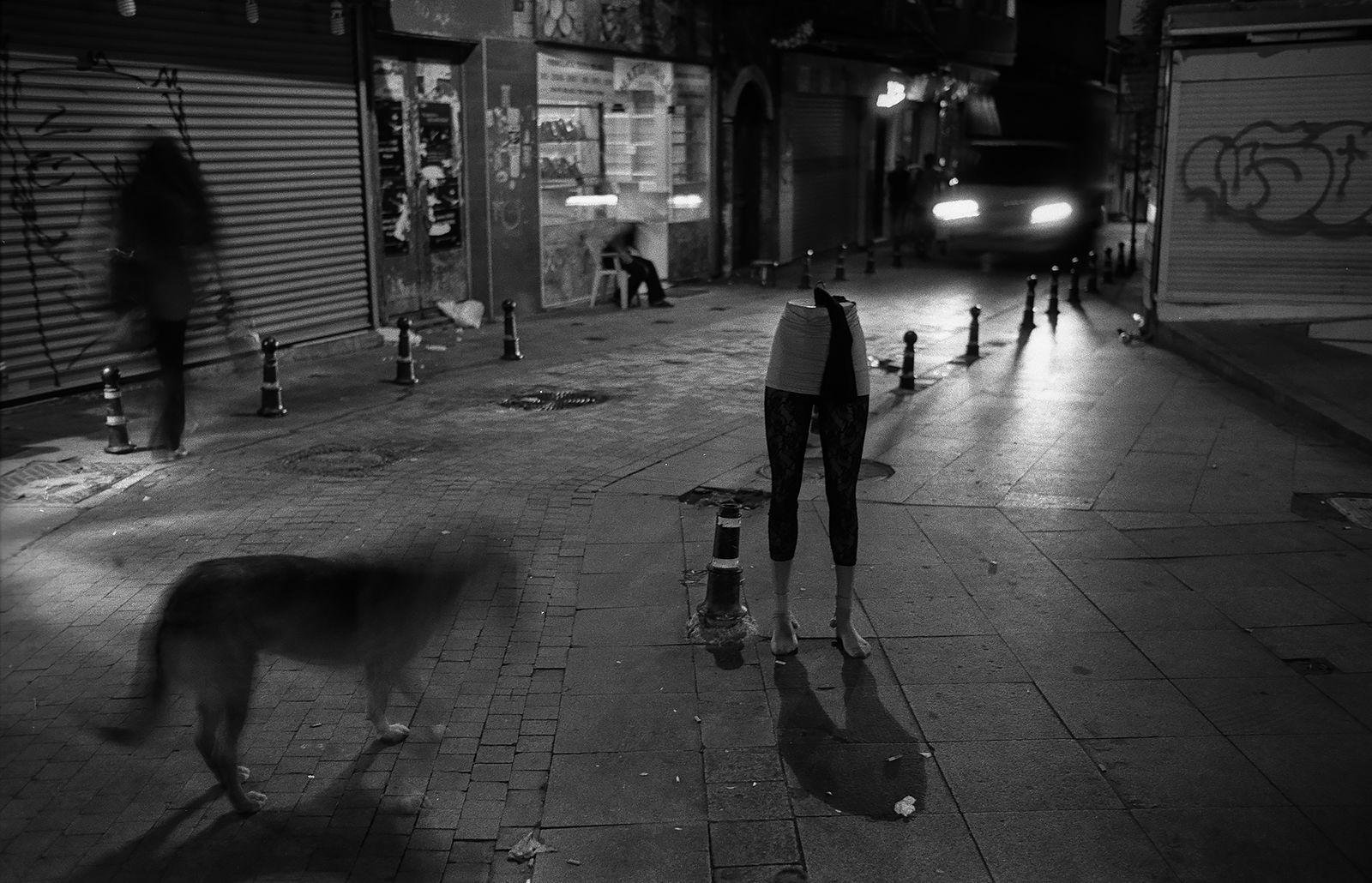 Евгений Сафьян. Manequin cities. Турция, Стамбул, 2010