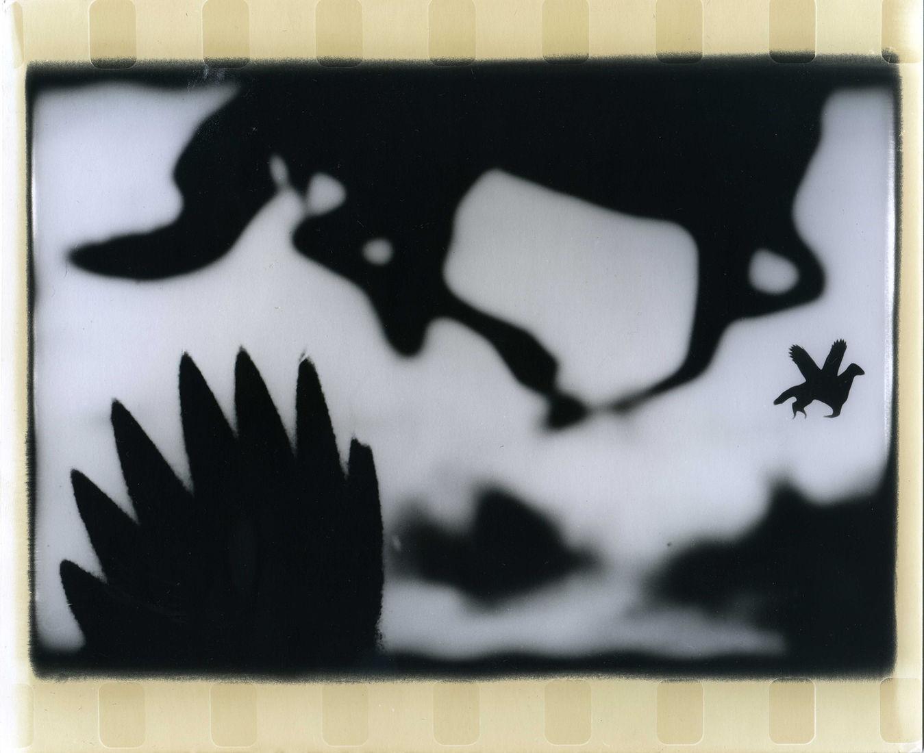 "Александр Черногивов. Серия ""Природоведение"" . 2009 г.- 2011 г.. Без названия"