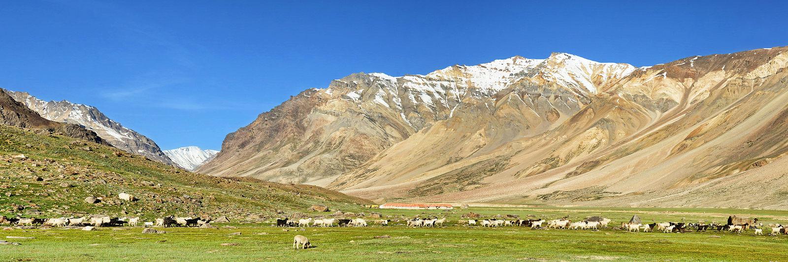 Ivan Aleshin. NH21 and other Himalayan Roads. 0009